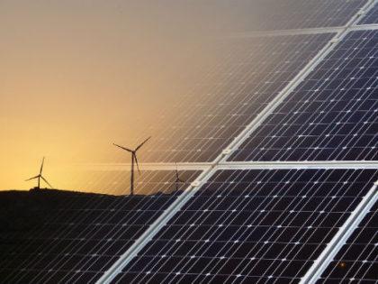 El Programa empleaverde apoyará la creación de empresas que apuesten por la sostenibilidad