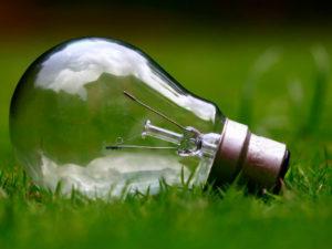 ¿Cómo convierto mi negocio en una empresa eco-friendly?