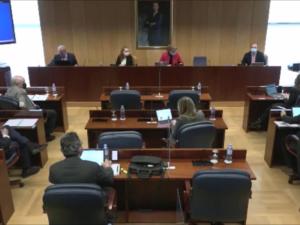 El Dr. Campo Vidal (Cátedra de Despoblación de Next Educación) comparece en la Asamblea de Madrid: debate íntegro